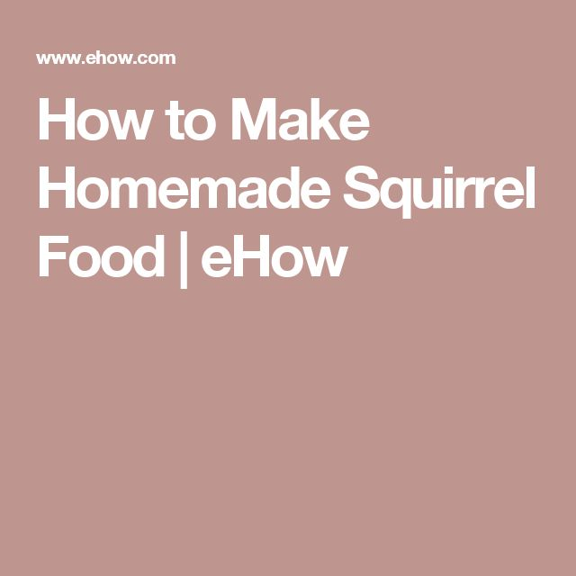 How to Make Homemade Squirrel Food | eHow