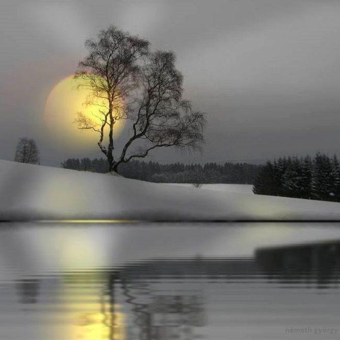Midnight Sun - Éjféli Nap