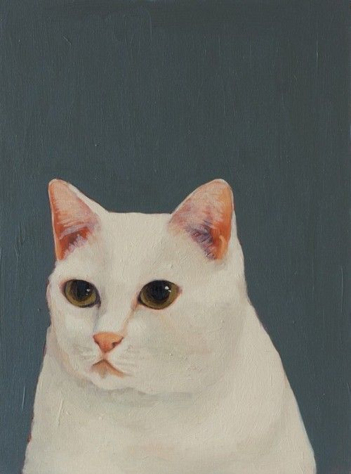 Love this cat by the amazing Kate Pugsley