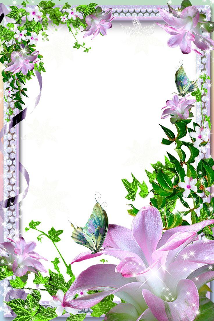 Festmenyek 3d ben 575 - Transparent Png Photo Frame With Pink Lilies