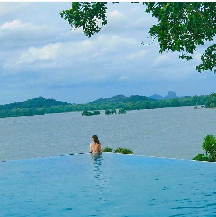 Incredible view and amazing time @kandalama hotel Dambulla - Sri Lanka.  Explore Sri Lanka with Us. . 94 777854022 (Mobile-WhatsApp-Viber-Line-Imo) . Email - info@srilankatravelandtourism.com.  http://ift.tt/16GhshT  Photo by - @momyuumi  #russia #tajikistan #armenia #germany  #arab #uzbekistan #lithuania  #srilankatravel #ukraine #argentina #colombia #traintours #ella #english #lexumbourg #belarus #amenia #kazakhstan #uae #british #travels #srilanka #triptosrilanka #visitsrilanka…