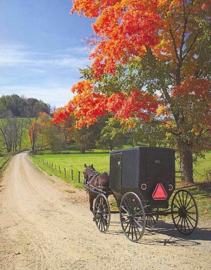 Amish Life Amish Pinterest Beautiful People