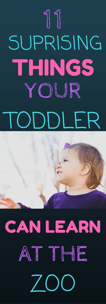 Are you planning a trip to the zoo this summer?  If you will be bringing a toddler along with you this is a great way to encourage development while having fun at the zoo.  Simple and easy ways to help your toddler learn!