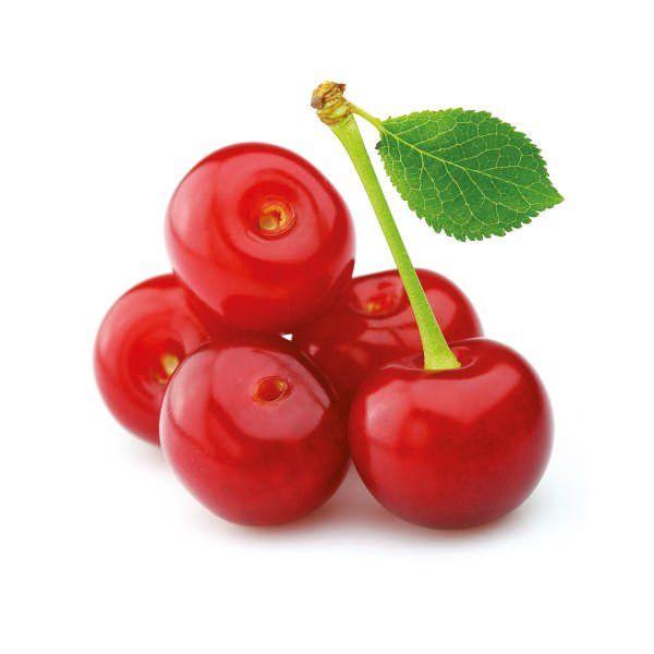 Wiśnia - Prunus cerasus 'Pandy 103'