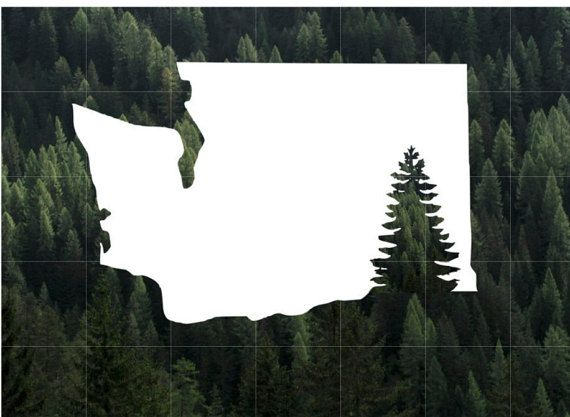 Washington State Evergreen Silhouette Vinyl Decal by FoxDenDecals
