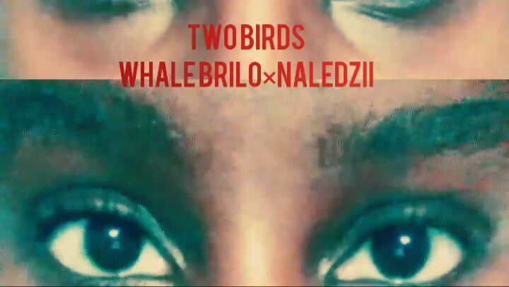 "18 Likes, 1 Comments - N/\LEDZII (@naledzii_) on Instagram: ""This JAM with no peanut butter. Whale Brilo × Naledzii Link in Bio""  Naledzii does it again, this time with Whale Brilo on this epic song released from Whale Brilo's mixtape ""Street Bible"""