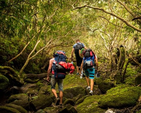 best hikes in Sydney