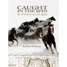 Caught In The Spin: The Wild Horses of C.F.B Suffield