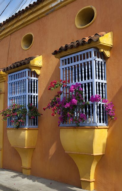 Perhaps have some flowers like these in the kitchen.... Cartagena de Indias Colombia