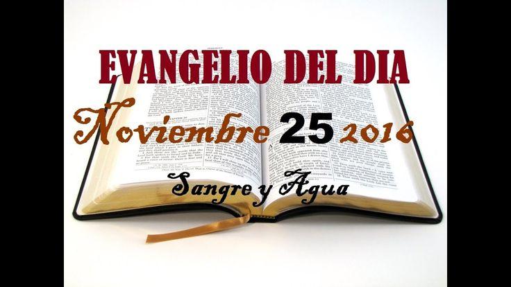 Evangelio del Dia- Viernes 25 de Noviembre 2016- Sangre y Agua