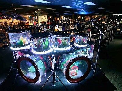 Drums... that's all original pin said:) Which is why I make MY board special! > RESEARCH - #DianaDee - DRUMS & DRUMMING JOY - https://www.pinterest.com/DianaDeeOsborne/drums-drumming-joy/ - Nov 25, 2013 YouTube: Wayde King & Brett Raymer of #Animal #Plan