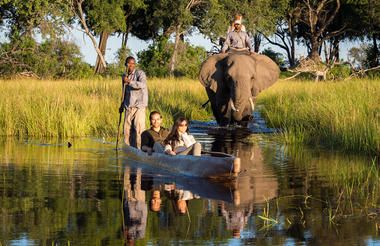 Lets Explore Botswana! Here is a Classic Itinerary that will make sure you see it all!