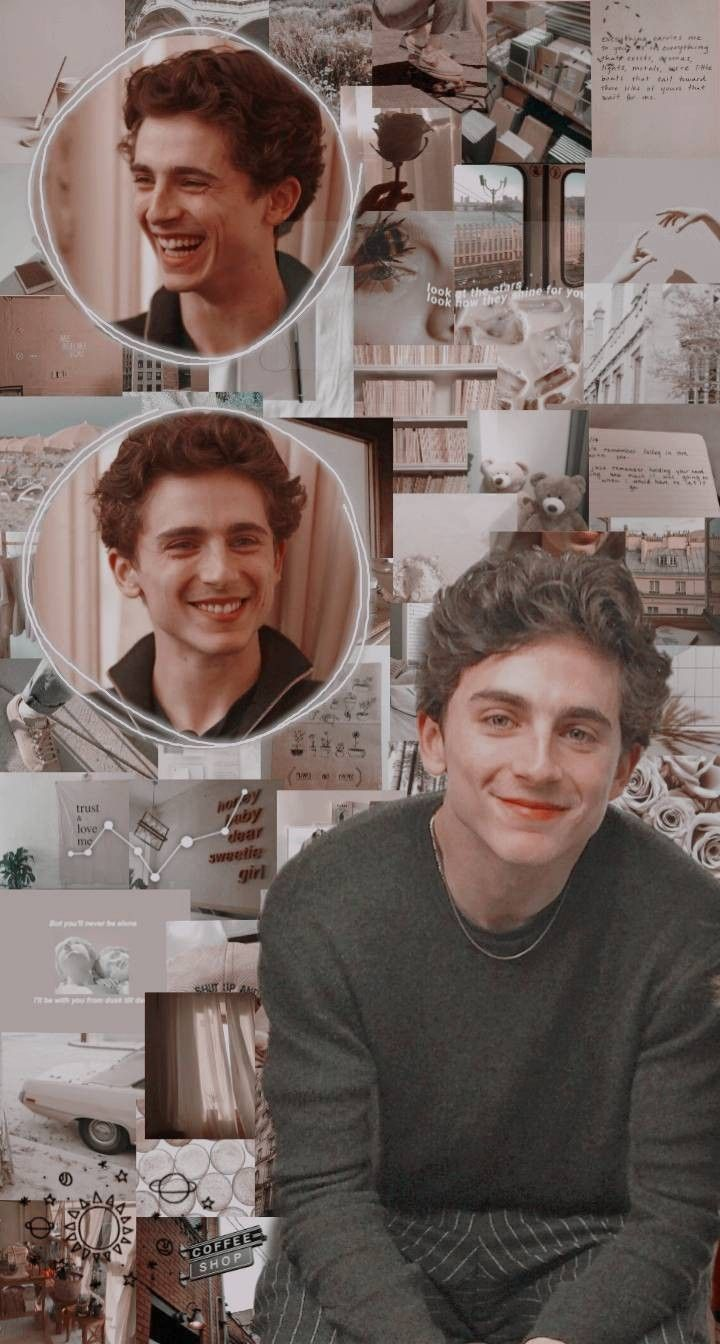 Aesthetic Pictures Of Timothee Chalamet
