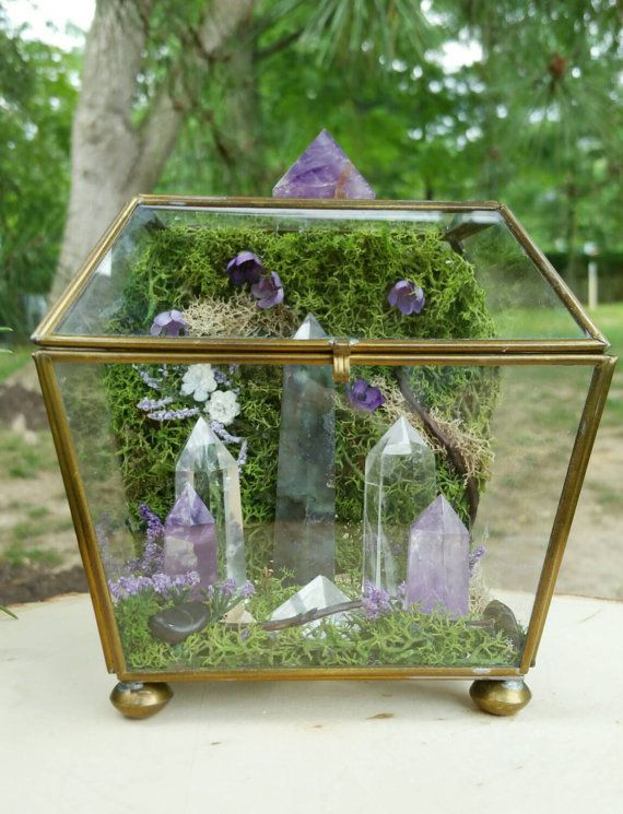 Hey, I found this really awesome Etsy listing at https://www.etsy.com/listing/241339118/terrarium-healing-crystals-terrarium-kit