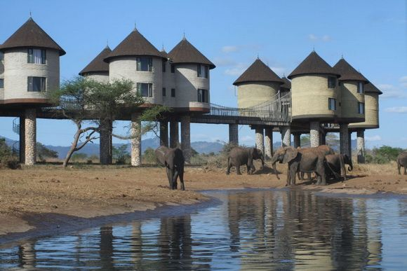 The hotel is made up of rooms on stilts above watering holes, connected by walkways, meaning guests have close up visual access to the game below.