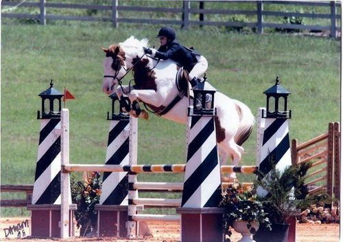 Scope much?  I think this horse should complete on a lower level… the jumps are obviously too big for this horse.