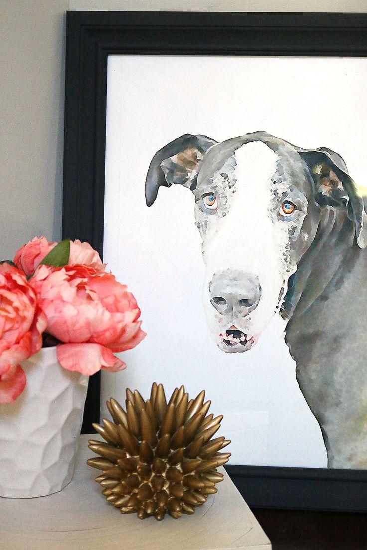 Watercolor Pet Portraits - Bower Power