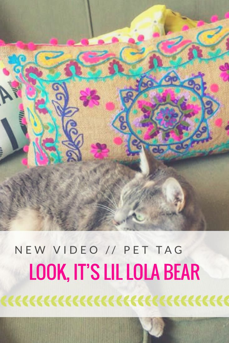 Curious as to who Lola Bear is? Click the link - hint... she's my cat! ;)