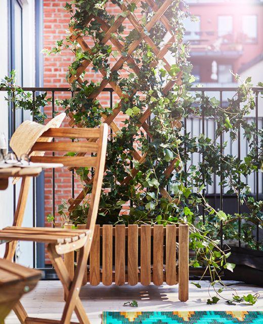 Un supporto per rampicanti in legno per far crescere le piante garantisce la privacy sul balcone - IKEA