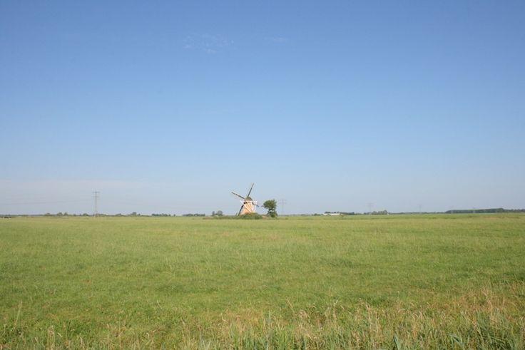 Blauwe luchten, groene weilanden...