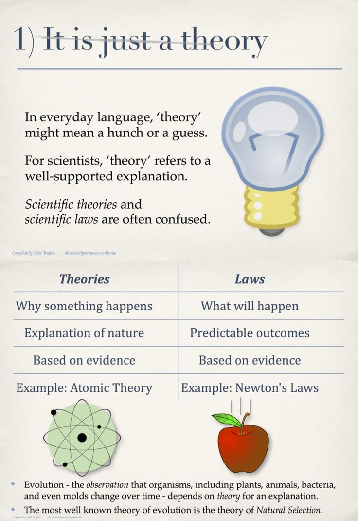 Scientific Theory Vs Natural Law