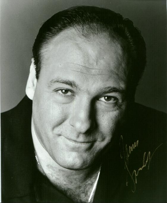 James Joseph Gandolfini, Jr. was an American actor and producer, best known for his role as Tony Soprano, an American Mafia boss in the HBO series The Sopranos.  Born: September 18, 1961, Westwood, NJ Died: June 19, 2013, Rome, Italy Spouse: Deborah Lin (m. 2008–2013), Marcy Wudarski (m. 1999–2002)