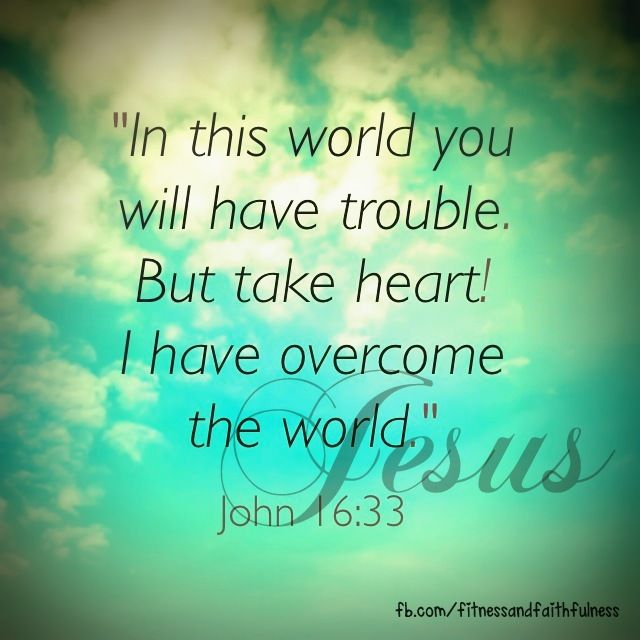 in this world you will have trouble but take heart i