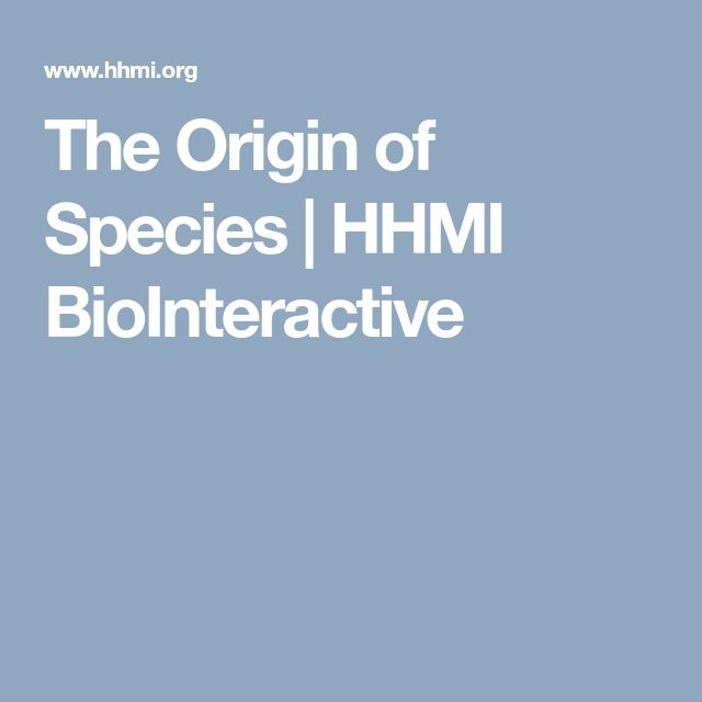 The Origin of Species | HHMI BioInteractive