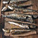Try the Tuna-Stuffed Grilled Sardines (Sardine alla Griglia con Tonno) Recipe on williams-sonoma.com