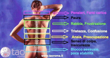 Il mal di schiena è strettamente connesso con le emozioni che proviamo tanto che ogni zona è associata ad un particolare stato emotivo. Postura sbagliata, organi deboli sedentarietà possono causare il mal di schiena ma non bisogna