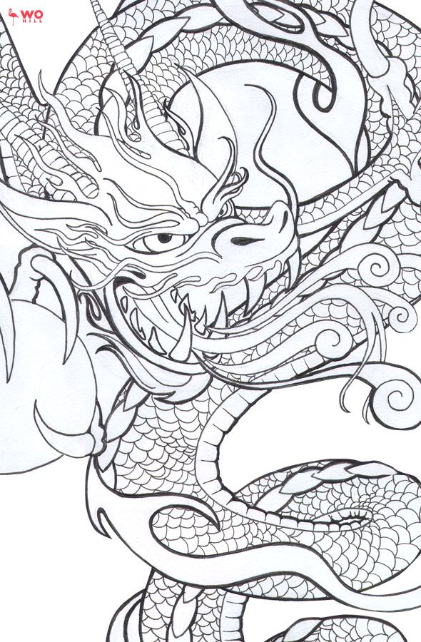 Japanese Tattoo Line Drawing : Best ideas about baby dragon tattoos on pinterest