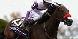 Image result for Nyquist Horse