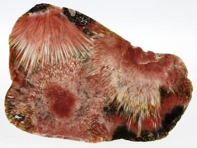 Prehnite Nodule 2 Polished Pieces. Keweenaw, Michigan