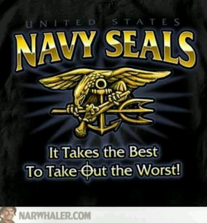 Navy Seal Punisher Logo
