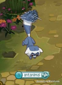 Animal Jam Lemurs animal-jam-lemur-codes-6  #AnimalJam #Animals #Lemur http://www.animaljamworld.com/animal-jam-lemur-codes/