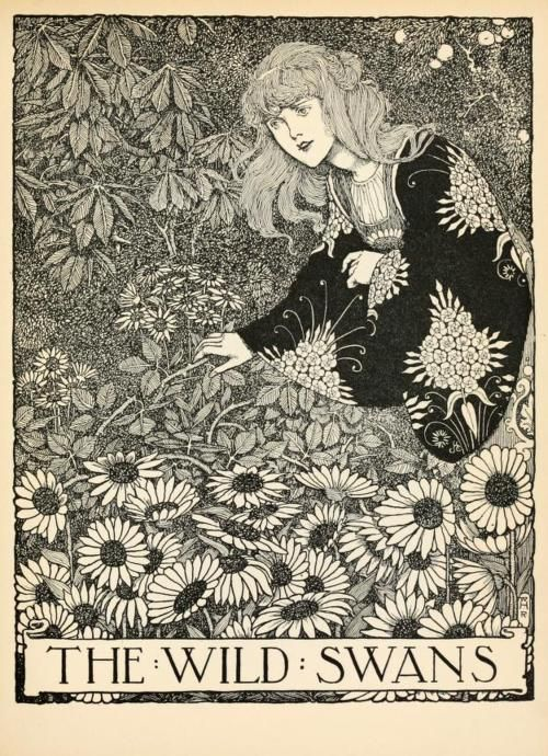 Hans Andersen's fairy tales with illustrations by W. Heath Robinson. Published 1913 by Constable in London