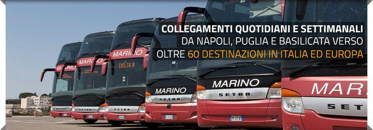 autolinee, autolinee pubbliche, autobus, bus, pullman, noleggio autobus, noleggio pullman, autonoleggio, servizio di linea, viaggi in pullman