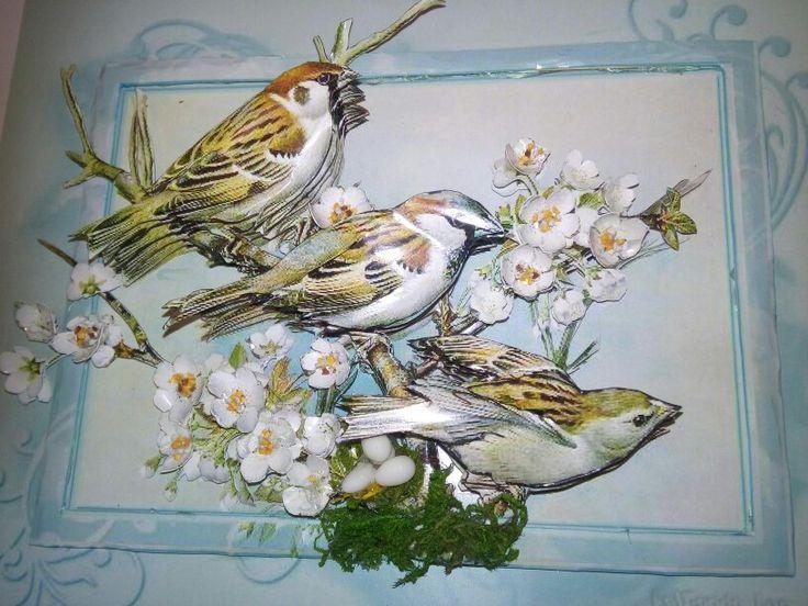 Birds and papertole-Sümbül Eldek