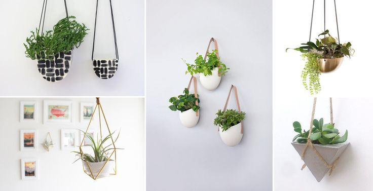 Friday Favourites - Taking Your Plants Vertical — Frame + Figure