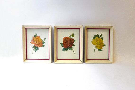 Vintage mid century 1950s set of three framed rose art by evaelena