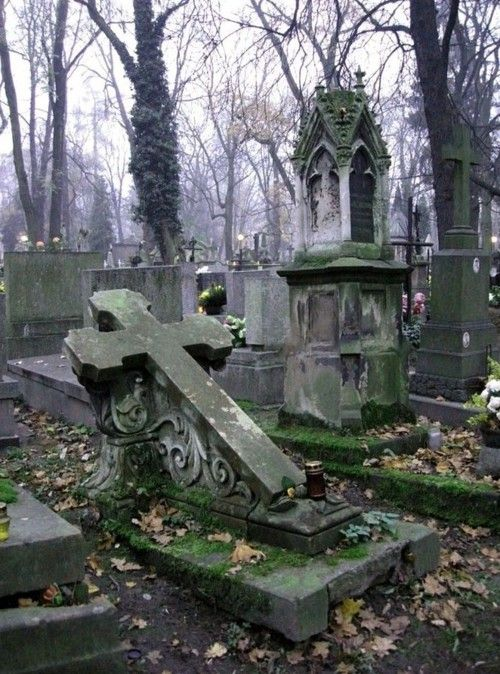 I think old graveyards are beautiful :-)