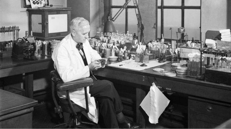 Alexander Fleming: biografía del descubridor accidental de la penicilina