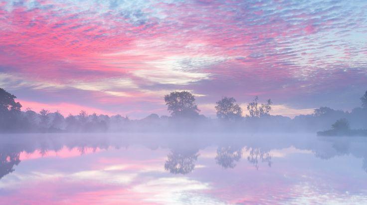 Скачать обои отражение, заря, туман, деревья, розовое, дымка, Утро, небо, река, облака, раздел природа в разрешении 1366x768