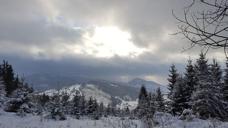 Beautiful winter in Romania, ideal for your Christmas vacation!