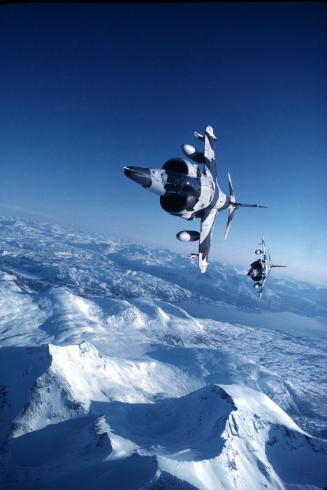 RAF Harriers in the Arctic