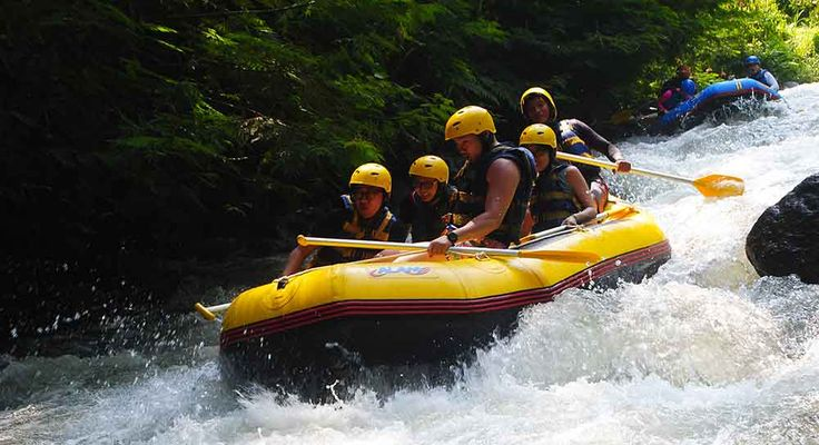 Bali White Water Rafting and Ubud Monkey Forest Tour is the best combination tour package to feel the experience white water rafting at Ayung River Rafting Ubud Bali and continue to visit Ubud monkey forest and Bali Coffee plantation in one day tour
