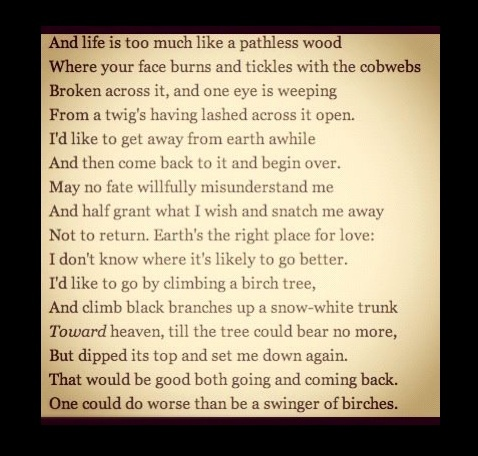 #Robert Frost #Birches  A lot of personal history in this poem, but I still love it!  Thank you, Mr. Frost, for writing such words.