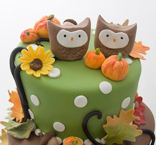 Nice cake with twin owls