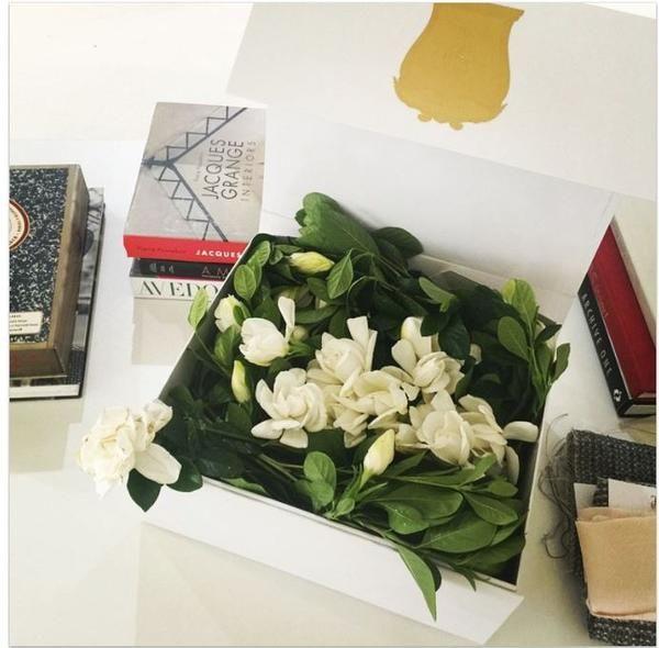 Vine And Bloom Box 30 Gardenias Flower Magazine Shop In 2020 Flower Boxes Luxury Bouquet Bouquet Delivery