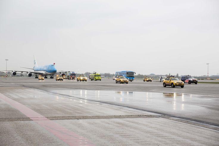 KLM a transportat doi urși Panda Gigant